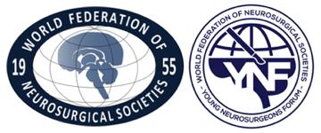 WFNS YNF Logo
